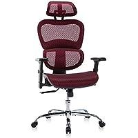 Rimiking Mesh Desk Chair with 3D Adjustable Armrests