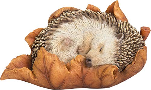 Vivid Arts Baby Hedgehog in Leaf Highly Detailed Home or Garden Decoration (XRL-HH09-F)