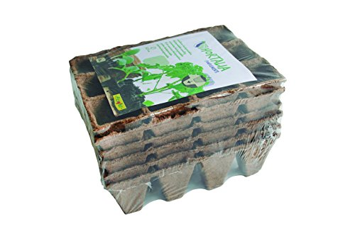 Flower 55044 55044-Semilleros biodegradables, 12 cavidades,