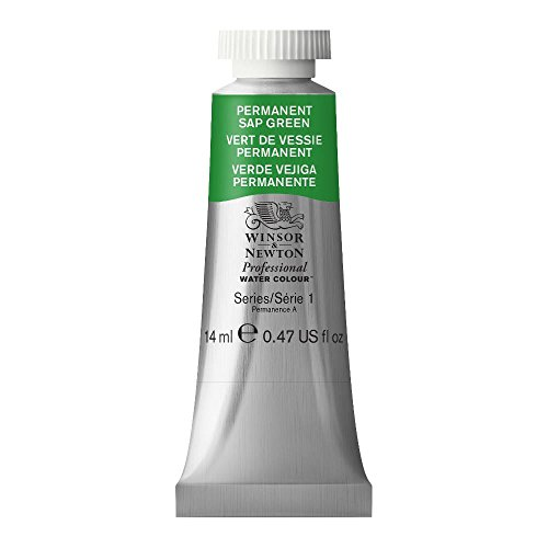 Winsor & Newton Professional Water Colour Paint, 14ml tube, Permanent Sap Green