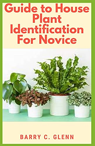 Guide to House Plants Identification For Novice: Identifying your houseplants is important to ensure that you're taking care of them properly