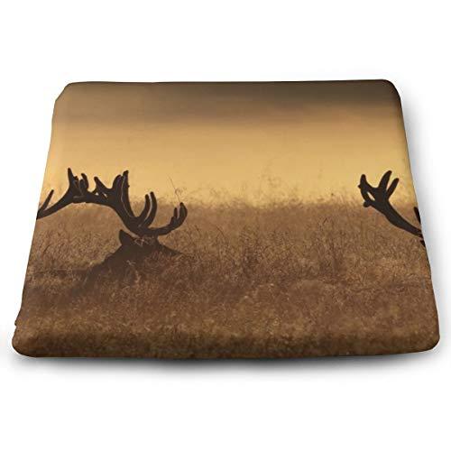Badwang Memory Foam Pad zitkussen. Autostoel kussens om hoogte te verhogen - bureaustoel comfortabel kussen - herten hoorns gras opknoping