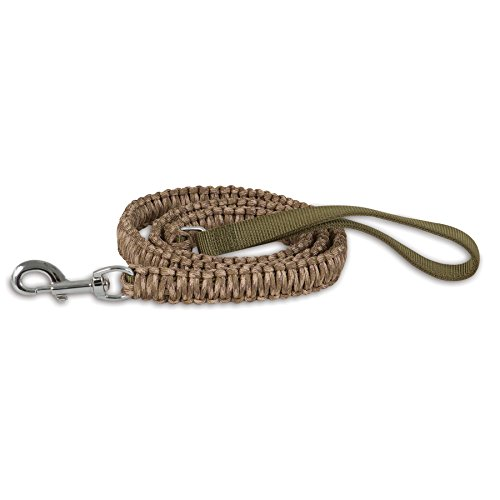 Aspen Pet Paracord Dog Leash