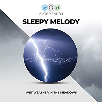 Sleepy Melody: Wet Weather in the Meadows