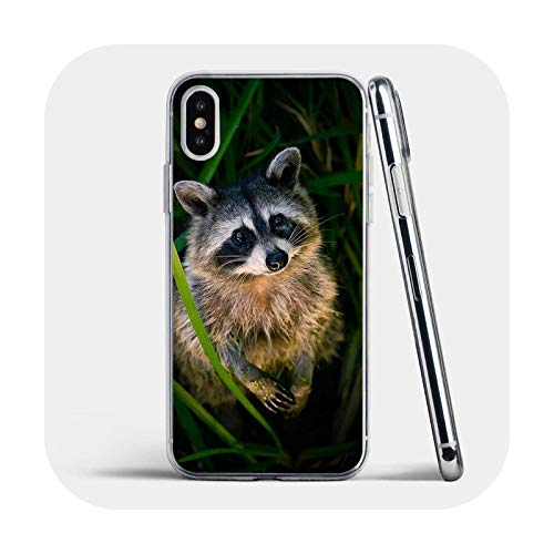 Para iPhone 6 7 8 Plus 4 4S 5 5S Se 5C 6S X Xr Xs 11 12 Pro Max Transparente Soft Shell Cover Animal Raccoon Fox-Image 16-para iPhone Xr