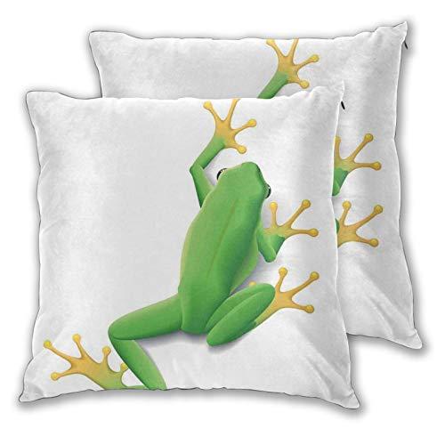 FULIYA Fundas de almohada de 2 piezas con ilustración decorativa de una rana de detrás de pequeñas patas trópicas, naturaleza salvaje, arte moderno, 40,6 x 40,6 cm, fundas de almohada con cremallera.