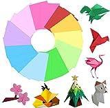 Hbsite Origami Paper 100 hojas de 7.9 pulgadas cuadradas de doble cara 10 colores vivos para principiantes Capacitación y proyectos de manualidades