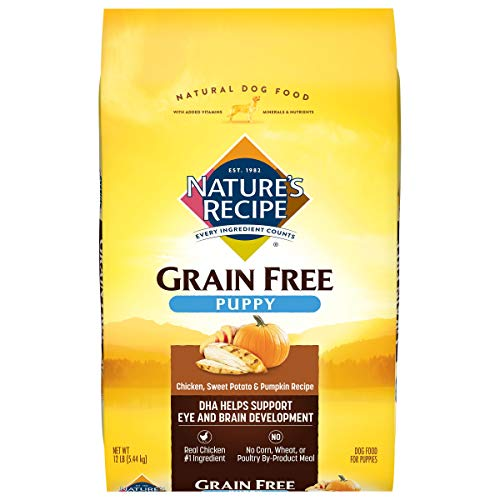 Nature's Recipe Grain-Free Pupppy Dry Dog Food, Chicken, Sweet Potato & Pumpkin Recipe, 12 Pounds, Easy to Digest