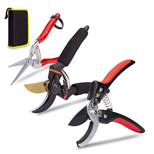 KOTTO 3 Pack Garden Pruner Shears Garden Tools Pruning Snips Set - Floral Scissors and Bypass pruners - Precise Pruning Flowers, Fruit Trees, Bonsai, Grapes - Carbon Steel Blades - Safety Lock Design