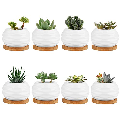 Plant Pots, Brajttt Succulent Pots with Drinage, Ceramic Flower Pots with Bamboo Tray, Cactus Planters with Hole(8 Pack)