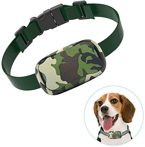 POP VIEW Bark Collar