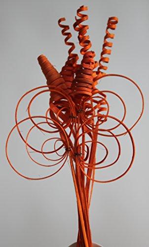 24 Cane Orange Dekorieren Trockenblume Gestecke Bodenvasen Floristik NEU