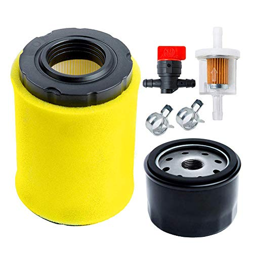HOODELL 796031 Air Filter with Tune Up Kit, for Briggs and Stratton 591334 492932 696854, John Deere D100 D110 D125 D130, Husqvarna YTH22V46, Lawn Mower Oil Filter