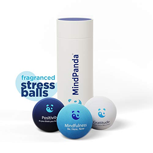 MindPanda 3X Stress Ball Bundle | Tri-Density for Hand Exercise Therapy - Fragranced for Extra Focus - Motivational Affirmations - Great for Kids Teens and Adults