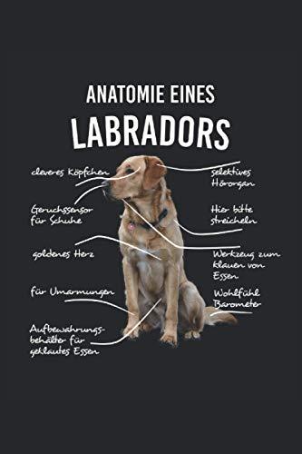 Anatomie eines Labradors NOTIZBUCH JOURNAL: 120 Seiten Notizbuch | liniert | creme weißes Papier | Tagebuch | Geschenk für Labrador- und Hundebesitzer