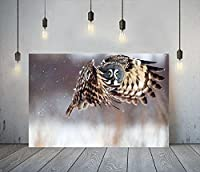 ブラウンフクロウキャンバスウォールアートパネルクリエイティビティアニマルキャンバスポスターとプリント北欧絵画インテリアモダンな美的スタイル部屋の壁の装飾写真40x60cmフレームなし