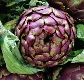 Purple Italian Globe Artichoke Seeds, 50+ Heirloom Seeds Per Packet, (Isla's...