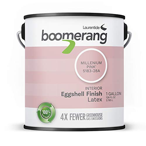Image of Boomerang Eco-Friendly...: Bestviewsreviews