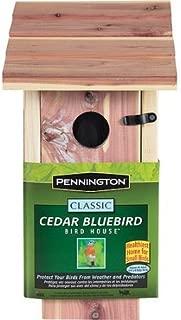 Pennington Cedar Bluebird Wooden Wild Bird House, 1 unit