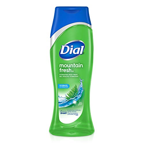 Dial Body Wash, Mountain Fresh, 16 Ounce, Pack of 6