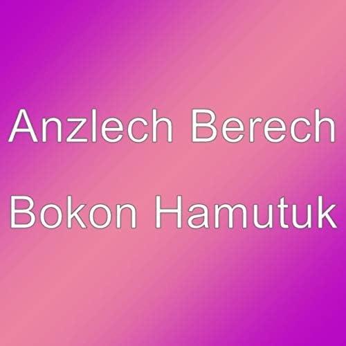 Anzlech Berech