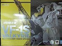 DX超合金 超時空要塞マクロス 初回限定版 VF-1S バルキリー ロイ・フォッカースペシャル