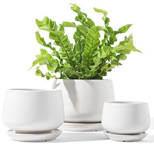 LE TAUCI Plant Pots with Drainage Holes and Saucers, 4