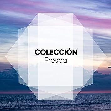 """"""" Colección Fresca """""""