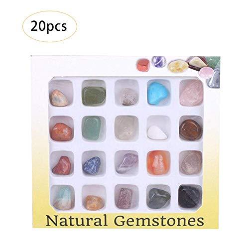 Juego de 20 piezas de coleccin de rock Science con caja de coleccin, muestras de roca natural para estudiar geologa y ciencia de la tierra