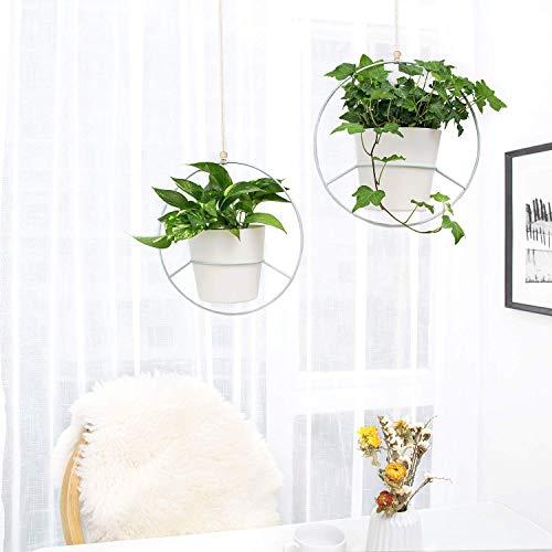Pflanzenaufhänger, Metallrunde Hänger
