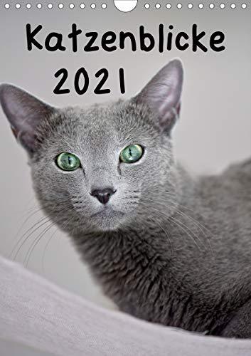 Katzenblicke 2021 (Wandkalender 2021 DIN A4 hoch)
