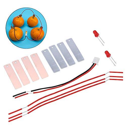 potente para casa Tnfeeon Kids Fruit Battery Kit, batería de frutas casera para generar energía …