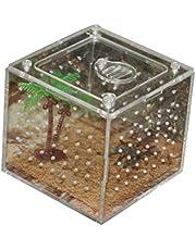 AIHOME - Caja de reproducción de reptiles de acrílico transparente para reptiles de reptiles para cría de mascotas