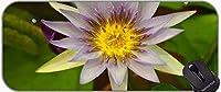 水彩花XXL拡張ゲームマウスパッド、蓮の滑り止めゴムベースマウスパッド
