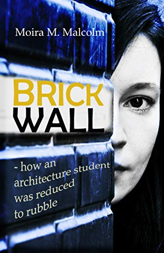 BRICK WALL: how an architecture student was reduced to rubble (English Edition)