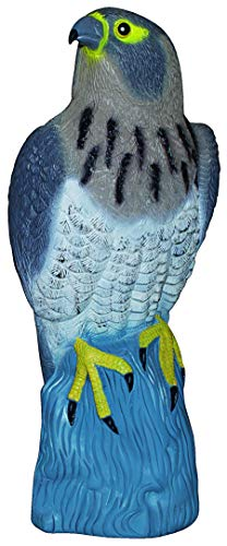 DILUMA Vogelschreck Vogelscheuche Raubvogel Falke sitzend, 42 cm