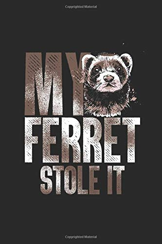 My Ferret Stole It: Gift for Kids, Teenager, Student - Dotted Bullet Grid Notebook / Journal (6 X 9)