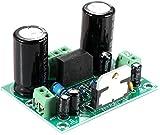 ZHITING TDA7293 Scheda Amplificatore di Potenza Audio Digitale Mono Canale AC 12-32V 100W