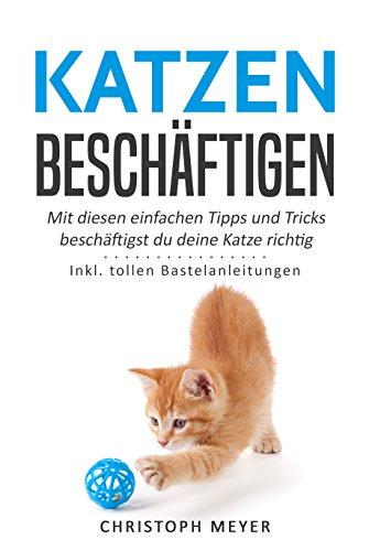 Katzen beschäftigen: Mit diesen einfachen Tipps und Tricks beschäftigst du deine Katze richtig - Inkl. tollen Bastelanleitungen (Katzen trainieren 4)