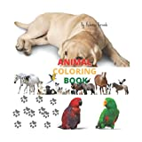 """Adult & Kids Animal World Coloring Book: Features Various Animals All Around The World 8.5"""" X 8.5"""" Suitable for All Ages COLOR ME Relaxing Workbook"""