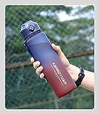 Nuevo frasco de vacío de material Tritan de grado alimenticio, termo de gran capacidad, botella sin aire de té y café,...