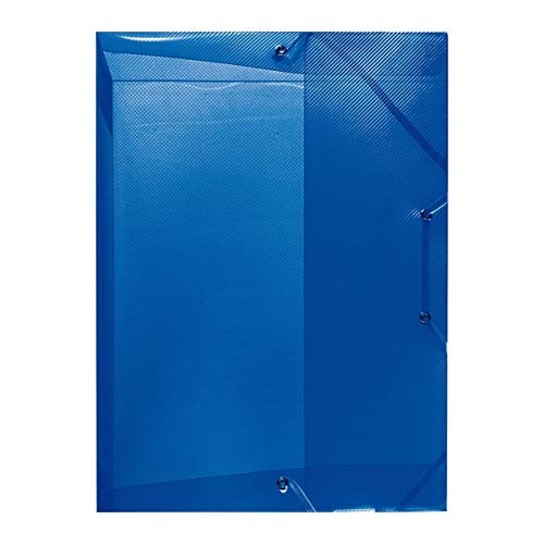 Herlitz 1948686 Heftbox A4, Rückenbreite 4 cm, PP, transluzent blau