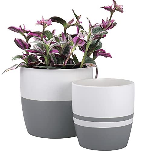 LA JOLIE MUSE Set di vasi rotondi in ceramica per interno - Vaso minimal moderno con finitura opaca, foro di drenaggio incluso, regalo per la decorazione, bianco e grigio classico, 15,5cm +13cm