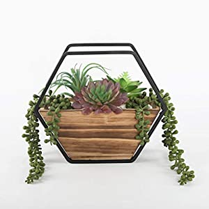 """Silk Flower Arrangements Unknown1 Artificial Plant Succulent in 11"""" Hexagon Wood and Metal Wall Planter One-Size Handmade"""