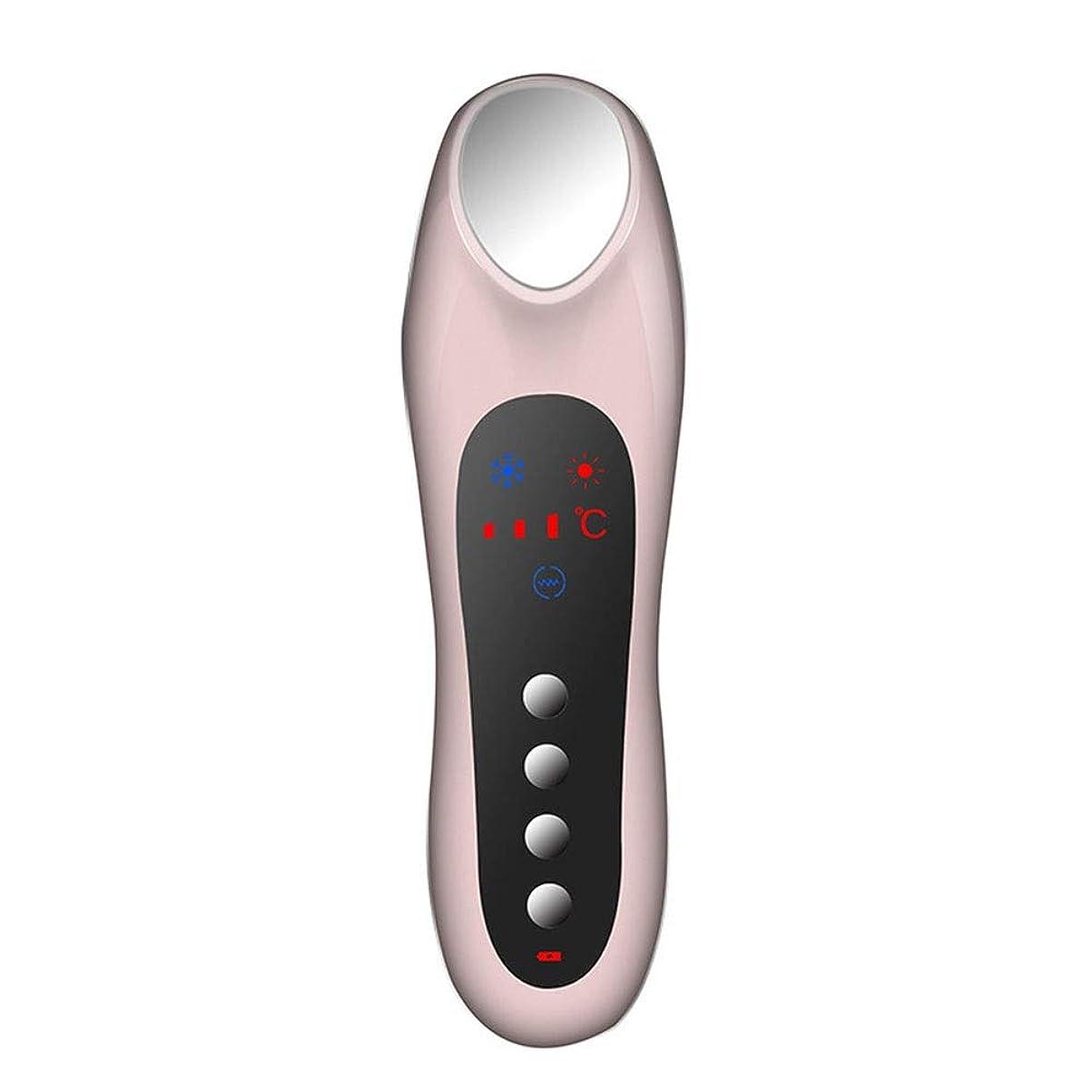 カーペットぶら下がるモンキースキンケア 家庭用USB充電冷温暖かいイオン深層導入デュアルモードホット&コールドスイッチング超音波振動マッサージマルチ運動エネルギー美容機器 (色 : Pink)