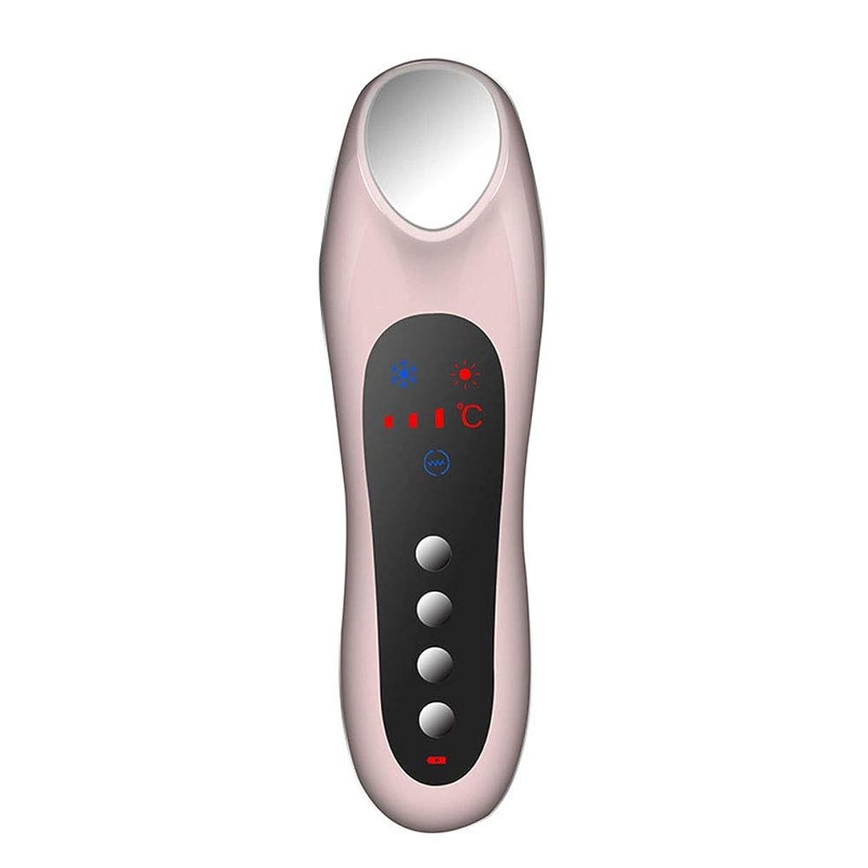 ぼんやりした応援する持つスキンケア 家庭用USB充電冷温暖かいイオン深層導入デュアルモードホット&コールドスイッチング超音波振動マッサージマルチ運動エネルギー美容機器 (色 : Pink)
