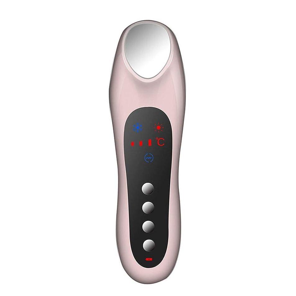 聴覚リブ上級スキンケア 家庭用USB充電冷温暖かいイオン深層導入デュアルモードホット&コールドスイッチング超音波振動マッサージマルチ運動エネルギー美容機器 (色 : Pink)