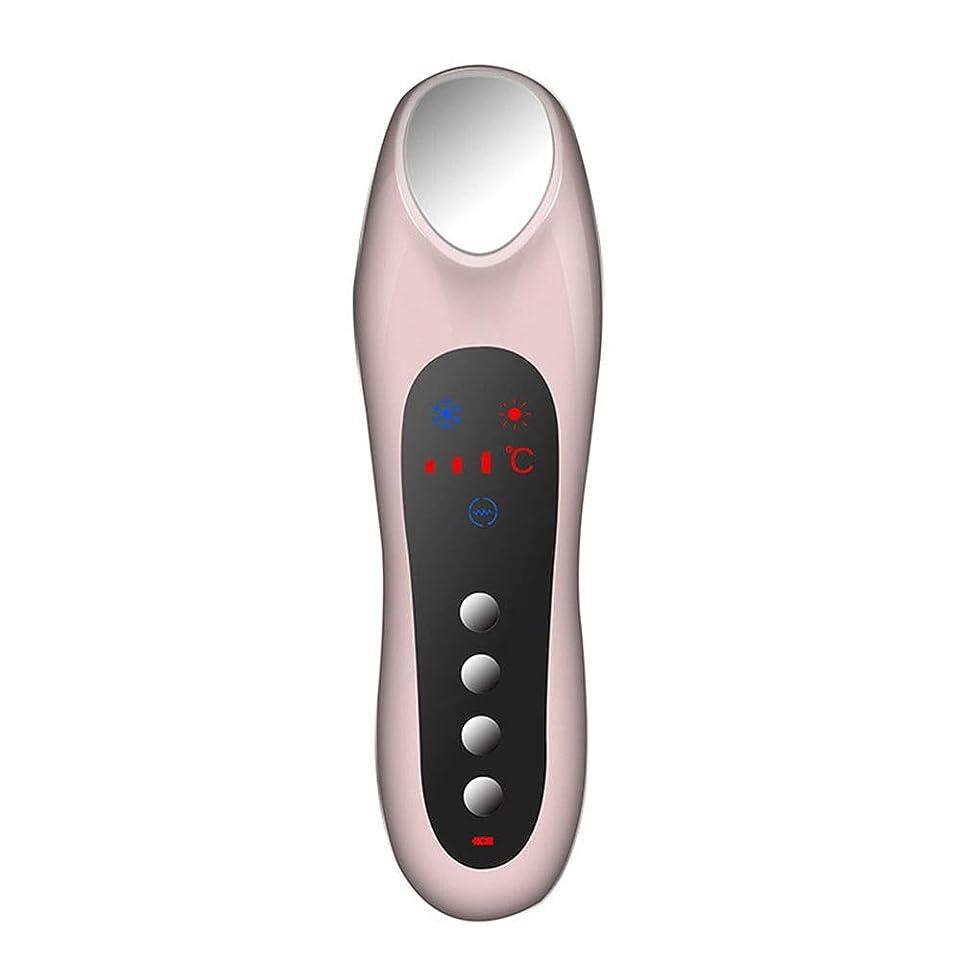 最初に息切れ差別スキンケア 家庭用USB充電冷温暖かいイオン深層導入デュアルモードホット&コールドスイッチング超音波振動マッサージマルチ運動エネルギー美容機器 (色 : Pink)