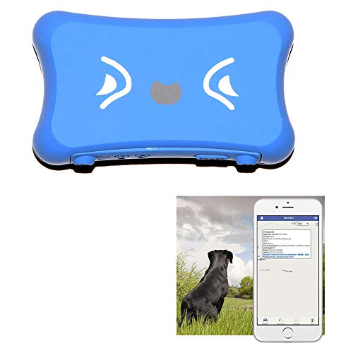 KASIONVI GPS Tracker Real time GPS Tracker IP66 Waterproof Real-time Tracking Pet GPS Tracker with APP Support iOS/Android GSM GPS Locator (Blue)