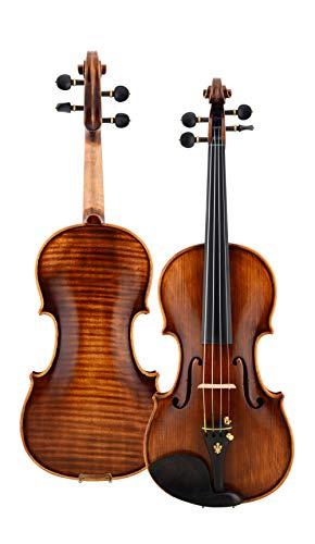 ABMBERTK Violino 4/4 Öllack Musikinstrumente, hochwertige Violine 4/4 Fall Bogen Kolophonium, Dreiviertel Größe